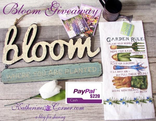 bloom- giveaway- katherines corner