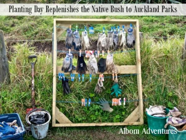 Planting-Day-Albom Adventures