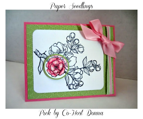Paper-seedlings-spotlighted-blossom-Donna