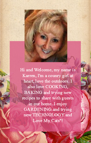 My Name is Karren, My Blog is Oh My Heartsie Girl