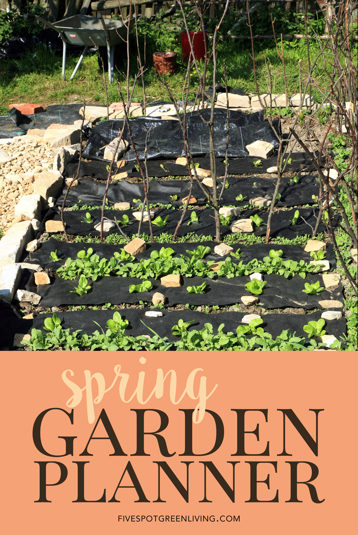 Five Spot Green Living A Spring Garden-Planner Planning a garden using a guide Know the best time to plant fruits and vegetables in your area